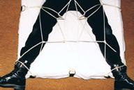 Bed web restraint system